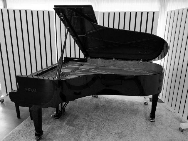 http://www.studiokraaikant.be/wp-content/uploads/2018/05/Piano-volledig-zwartwit-640x480.jpg